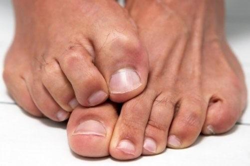 Почему твердеют ногти